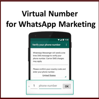 Virtual Number for WhatApp Marketing.jpg
