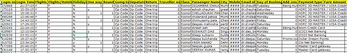 Frequent Flight Travelers