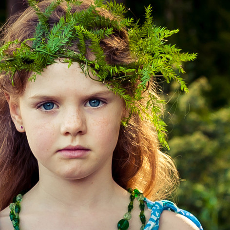 Little Bush Fairy