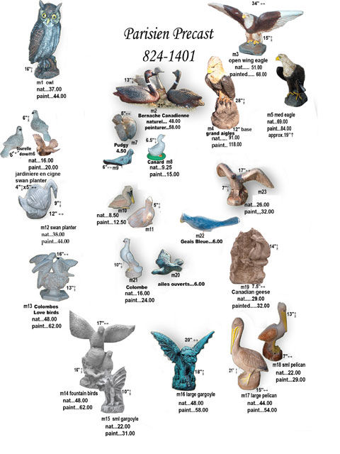 oiseau-020.jpg