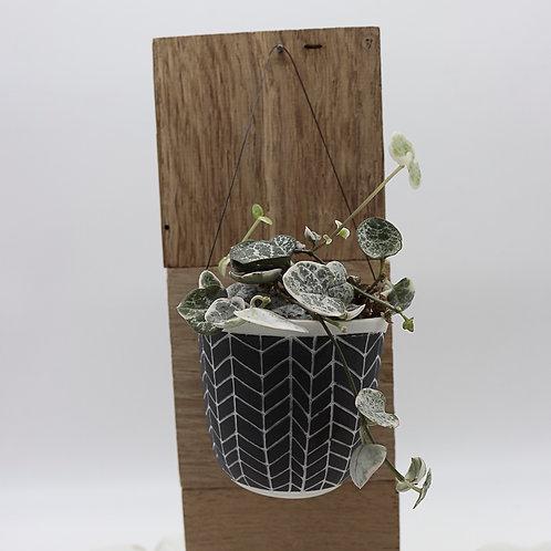Petite suspension porcelaine pour plante