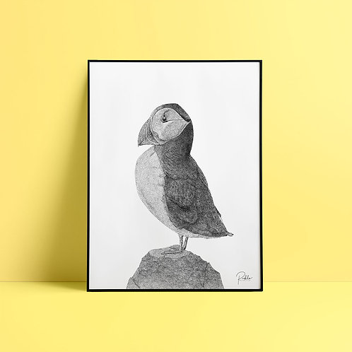 Sérigraphie Macareux / Noir