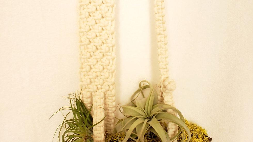 Asymmetric plant hanger with lichen branch