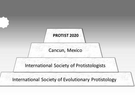 Protist 2020 ISOP/ISEP Meeting Cancelled