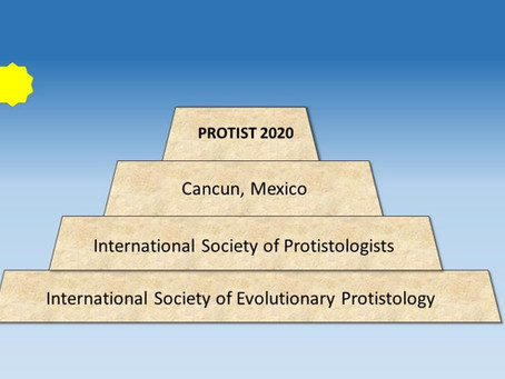 Statement to Members Regarding the Protist 2020 ISOP/ISEP Meeting