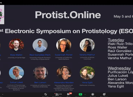 Videos From the 1st ESOP: Electronic Symposium on Protistology