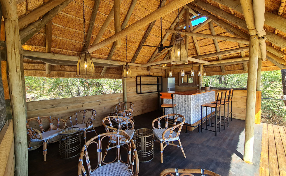 Safari bar.jpg