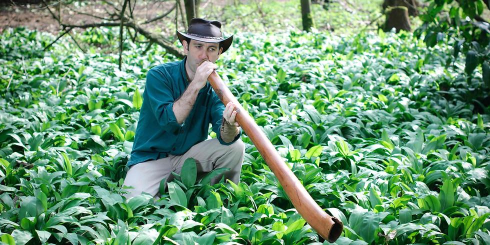 Didgeridoo Meditation in a Pine Forest