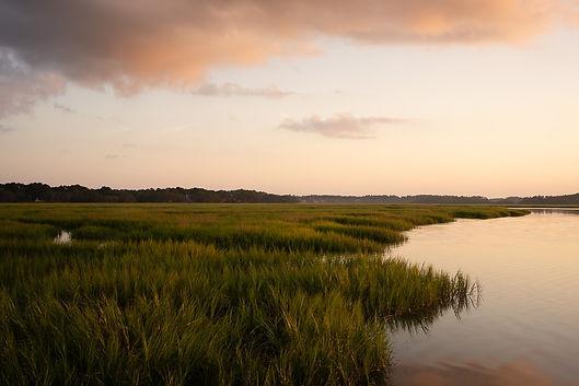 Marsh2.jpg