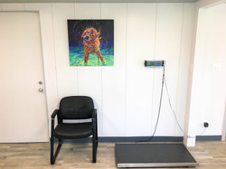 scale in lobby with dog art