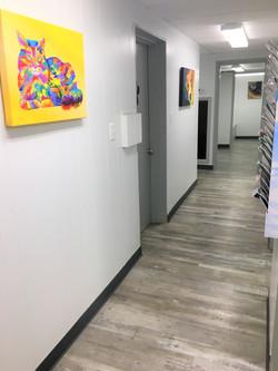 hallwayto examination rooms at veterinary clinic