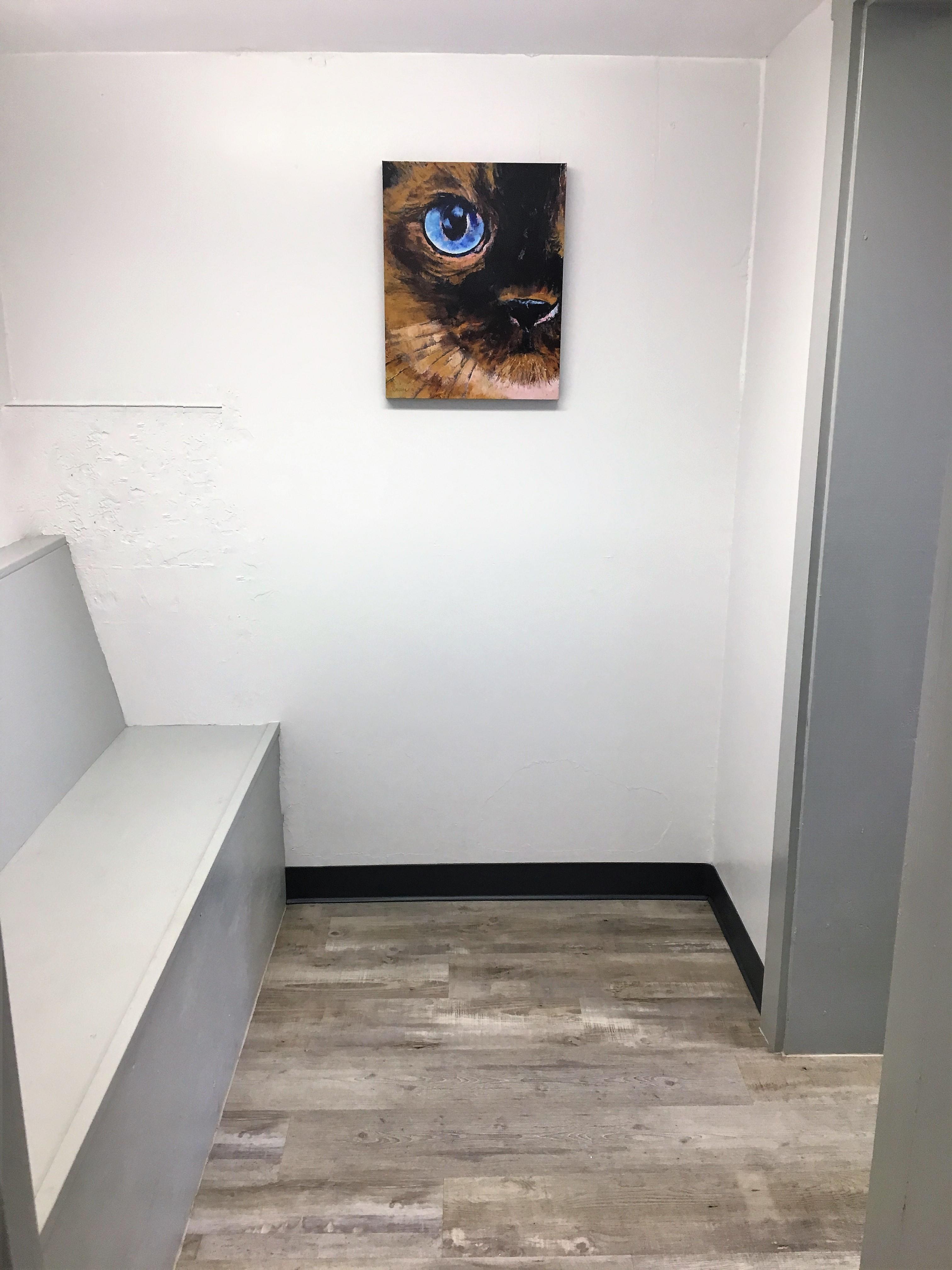 wall art in veterinary clinic pinehurst NC