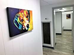 veterinary art on wall at Pinehurst Animal Hospital