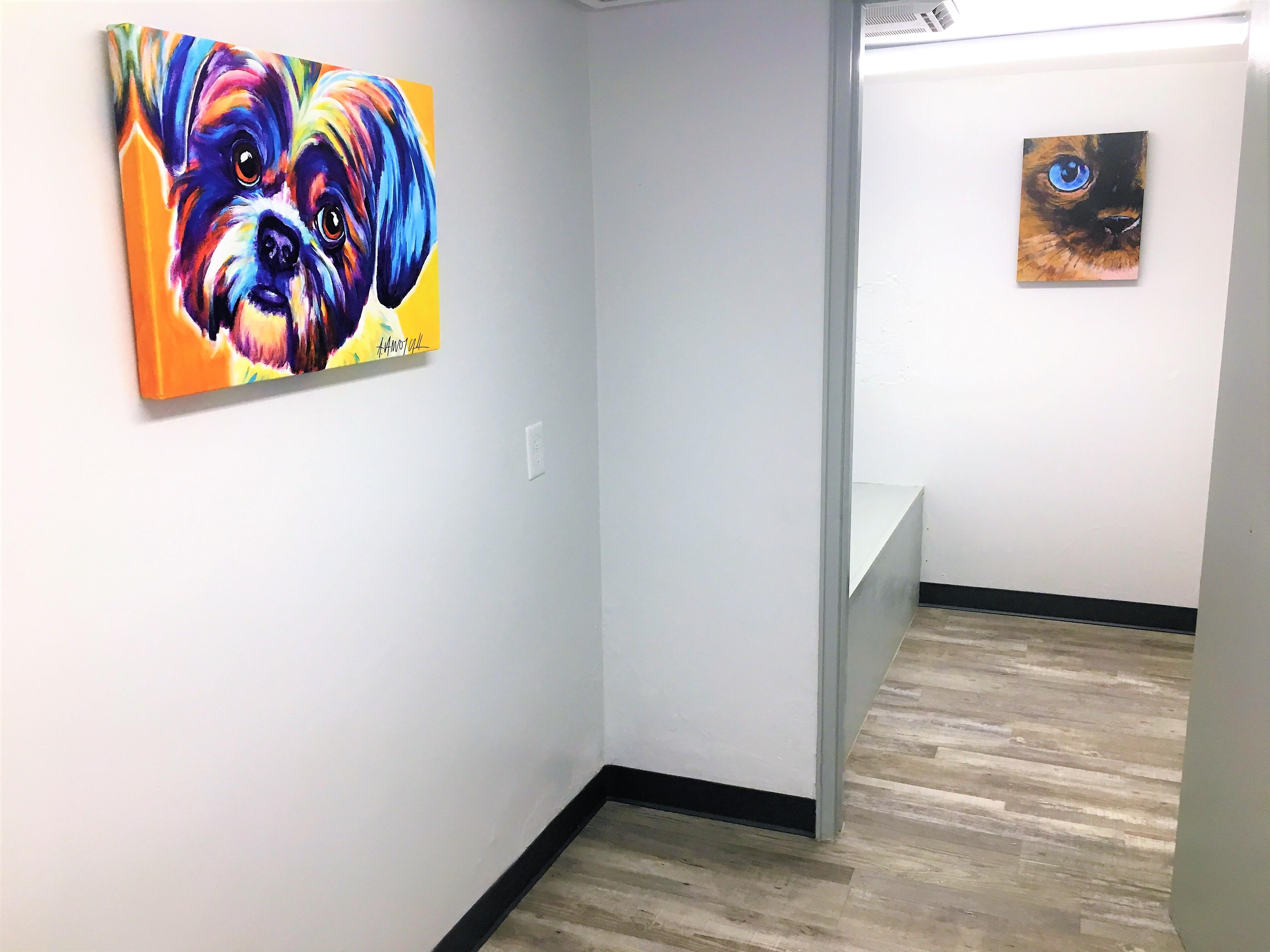 hallway art on walls of veterinary clinic