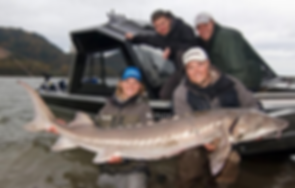 Fast Action Fishig Adventures Sturgeon fishing on the fraser river