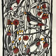 Australian Mistletoe Birds