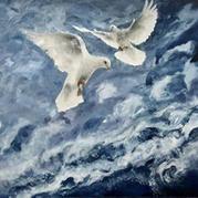 Seagulls At Play