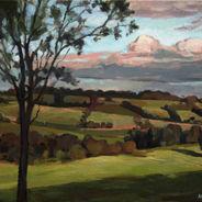 Flinders Landscape