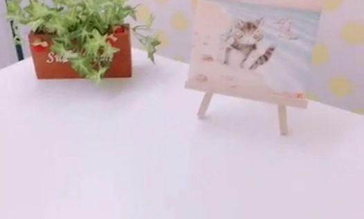 チャットレディCoCoの職場風景動画