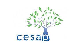 CESAP logo.jpg