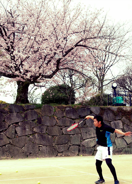 お花見テニス 舞鶴公園