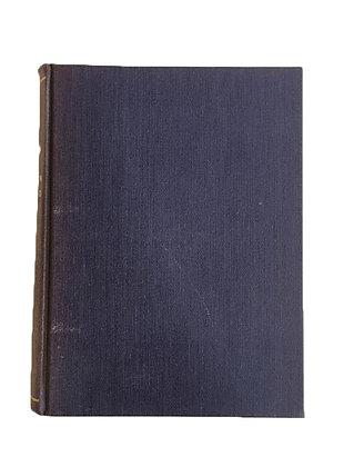Libro Mirador Porteño Medidas: 17 cm x 13 cm