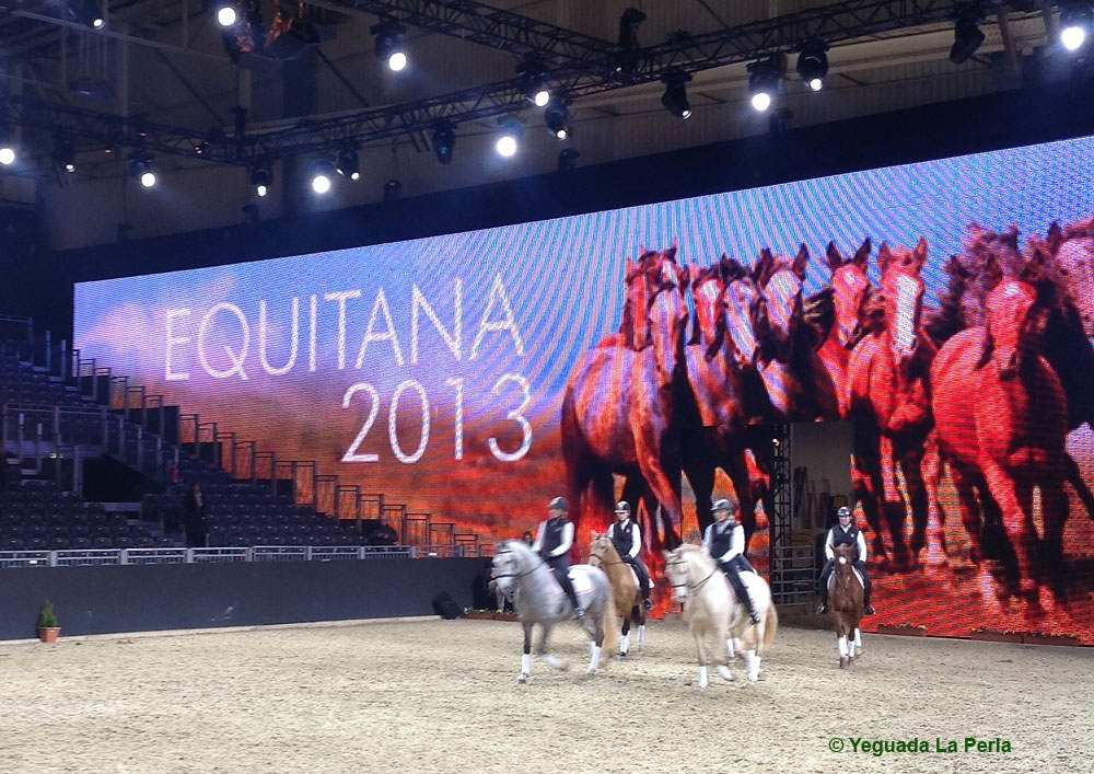 Equitana_5_EXHIBICION-EQUITANA.JPG