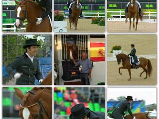 Großartige Gran Premio von Claudio und ALCAIDE in Rio 2016