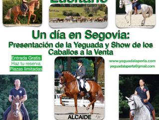Presentación de la Yeguada y Show de los caballos a la venta