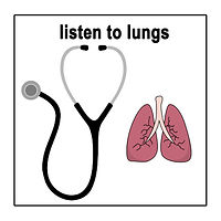 why lungs.jpg