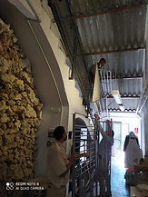 Foto 4. Trabajo en Red. 24 Octubre.jpg