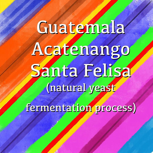 Guatemala Acatenango Santa Felisa (Natural Yeast Fermentation Process)