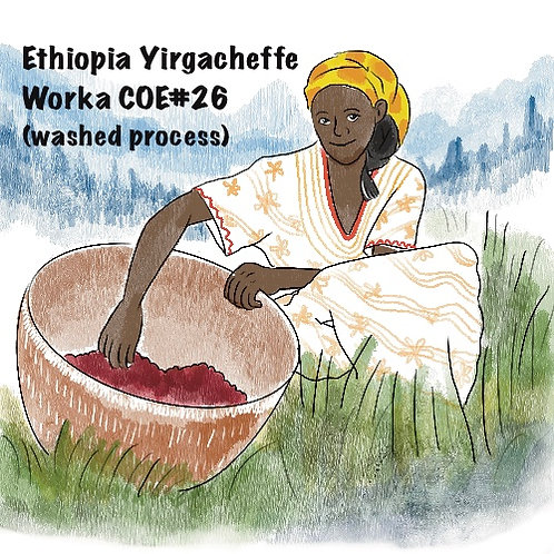Ethiopia Yirgachaffe Worka COE#26 (Washed Process) {Filter}