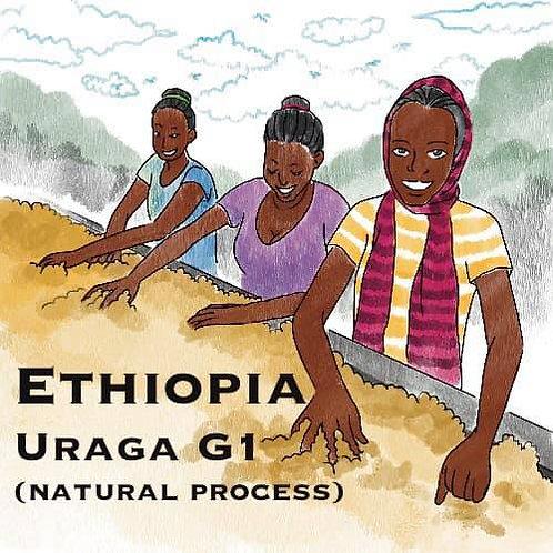 Ethiopia Uraga G1 (Natural Process) {drip bag 11g}