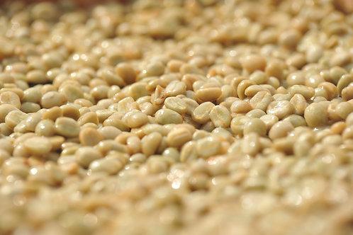กาแฟรักษ์ป่าอมก๋อย แม่โถ อ.ฮอด จ.เชียงใหม่ (Wine-Honey) {Espresso}
