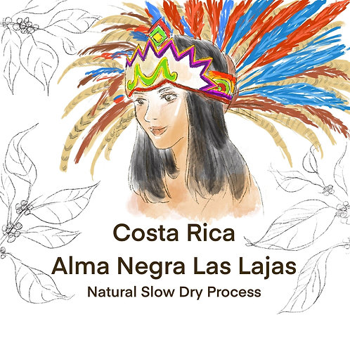 Costa Rica Alma Negra Las Lajas (Natural Slow Dry Process) 11g {Drip Bag}
