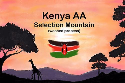 Kenya AA Selection Mountain  (Washed process) 250g {Filter}