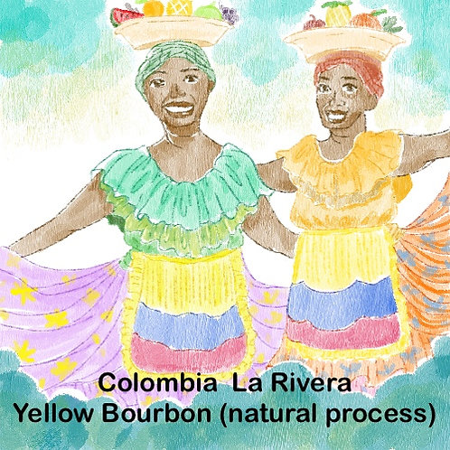 Colombia la Rivera Yellow Bourbon (Natural Process) {Espresso}
