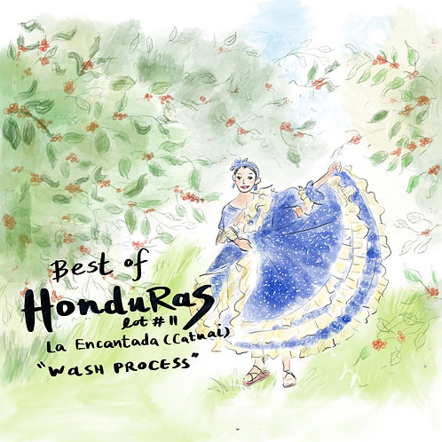 Best of Honduras lot#11 La Encantada (Catuai) (Wash Process) 11g {Drip Bag}