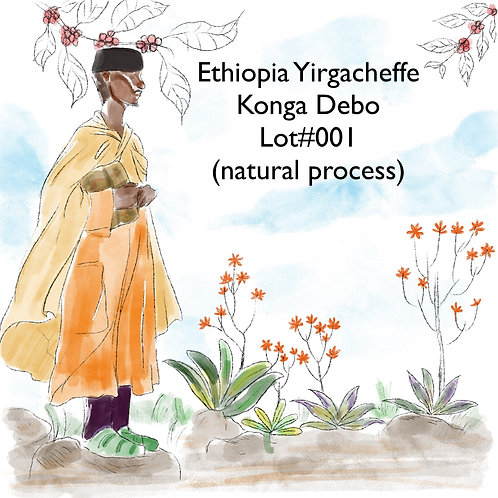 Ethiopia Yirgacheffe Konga Debo lot#001 (Natural Process){Filter}