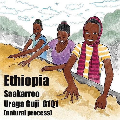 Ethiopia Saakarroo Uraga Guji G1Q1 (Natural Process) {Espresso}