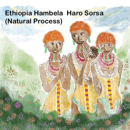 Ethiopia Hambela Haro Sorsa (Natural Process) {Espresso}