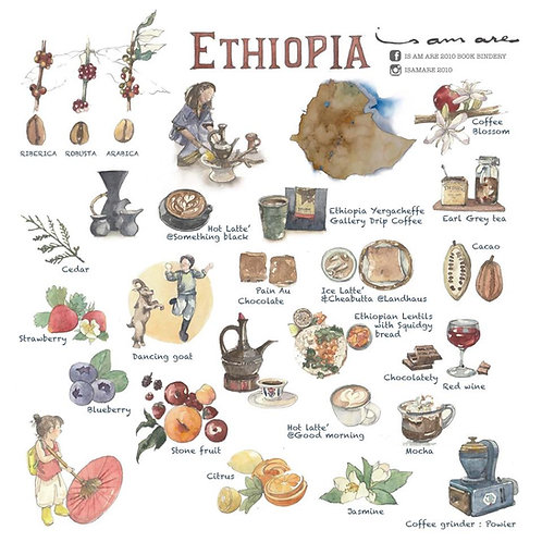 "{Sticker} Coffee Series Vol.7 ""ETHIOPIA"" Specialty coffee"
