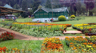 SOME PLACES TO VISIT IN OOTY, YOU WILL BE MESMERISED