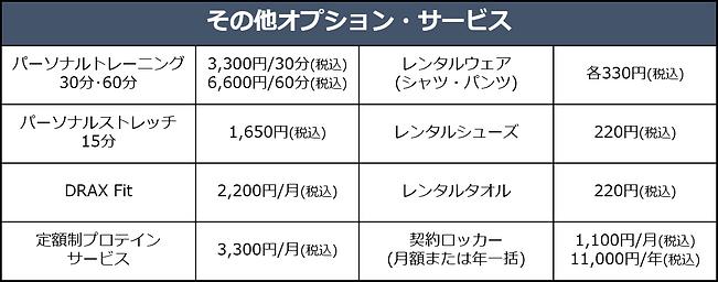 オプション料金表.png