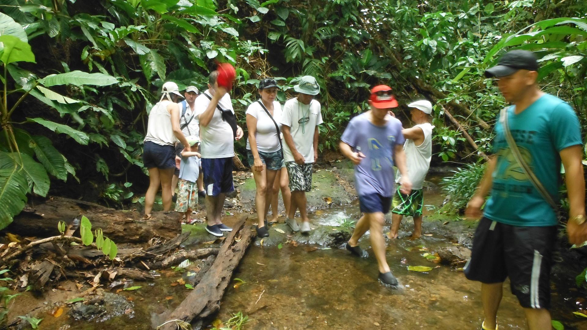 Caminata en la selva Pijibalodge