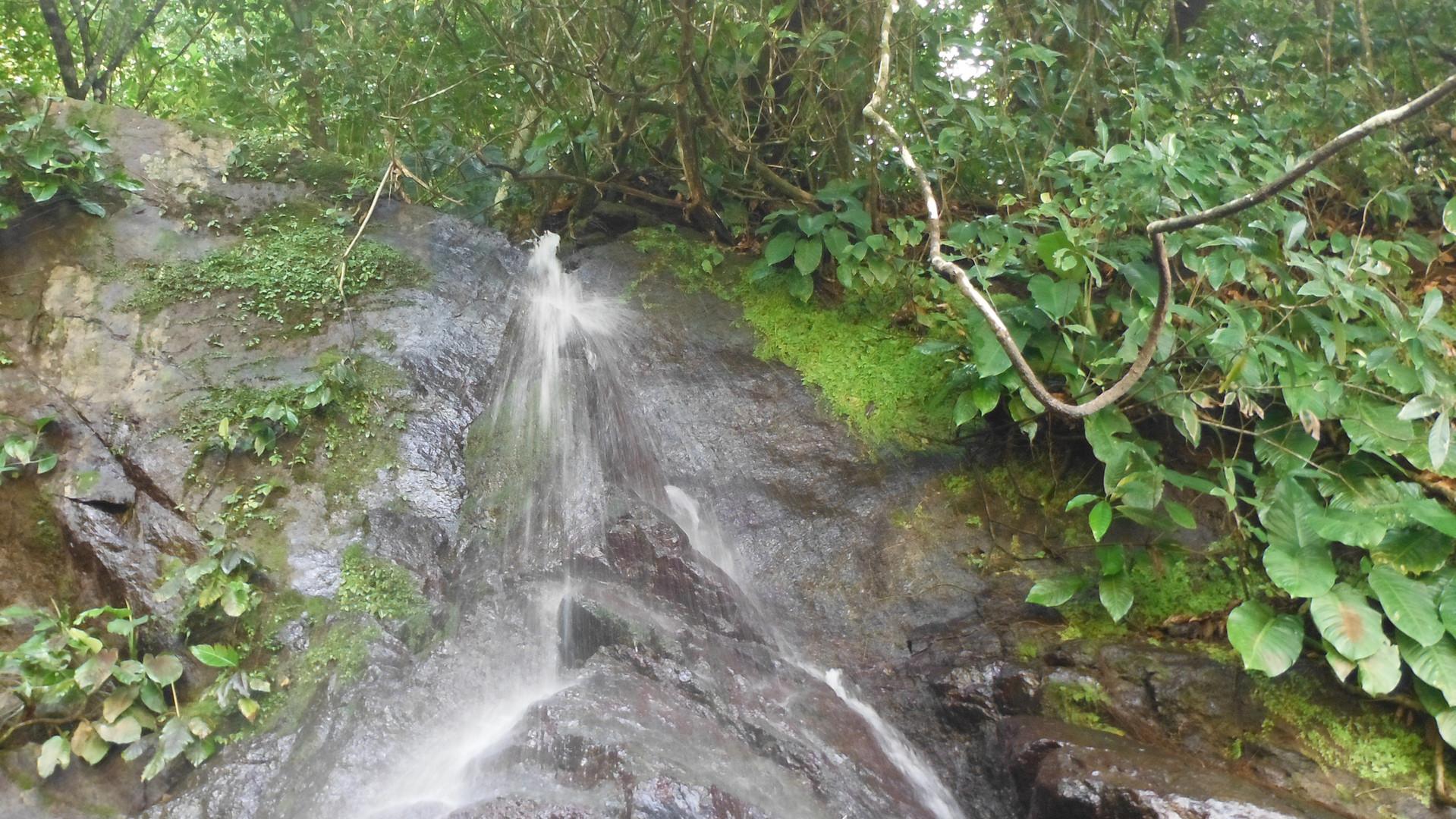 Cascada en berrugatera