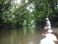 Paseo por el río joví