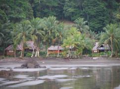 Cabañas  y playa Pijibalodge