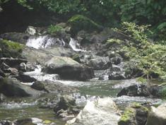 Paseo por el río Terco